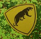 Russian Army Military Special Forces Spetsnaz Panther patch green