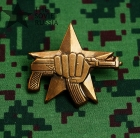 Russian Special Forces Spetsnaz Uniform Award Chest Badge AK 47 74 Fist