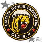 VDV Spetsnaz Patch